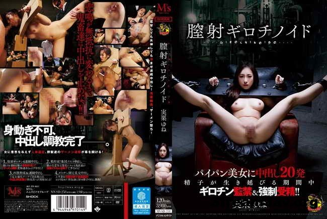 [MVSD-258] – I Boiled Chitsui Girochinoido Real Chestnut