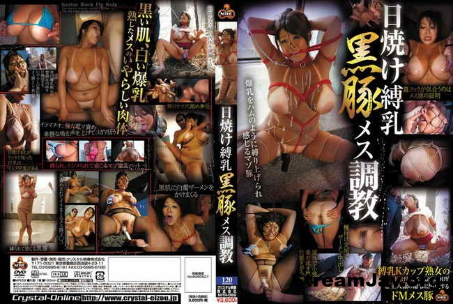 [NITR-069] – Sunburn Black Pig Female Torture