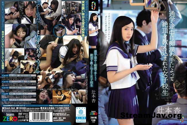 [TEAM-065] – Female School Student Raped By Perverts
